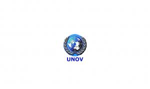 UN Job in Vienna, Computer Information Systems Assistant (Software Developer), G6, UNOV-139327