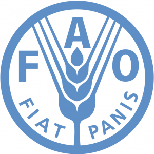 UN FAO Job Openings, Consultants, as of 25 02 2020